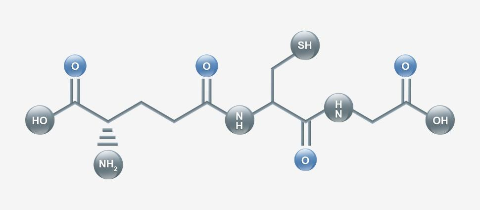 Image result for glutathione-benefits